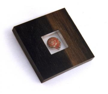 Square Pendant or Brooch Ebony & Pink Umbonium : $100